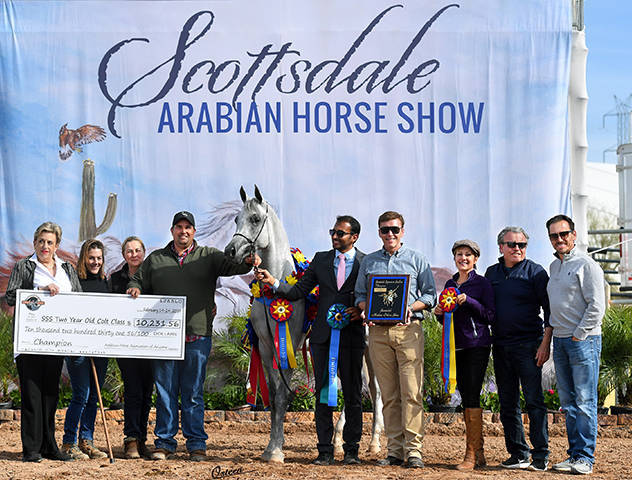 Kamal Al Khalif - 2019 Champion Scottsdale Signature Stallion Two-Year-Old Colt