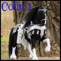 colin1