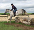 horse7luver