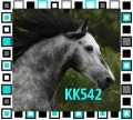 kk542