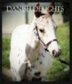 danish delights