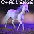 """challenge"""