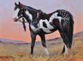 lakota sioux paints