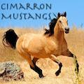 cimarron mustangs