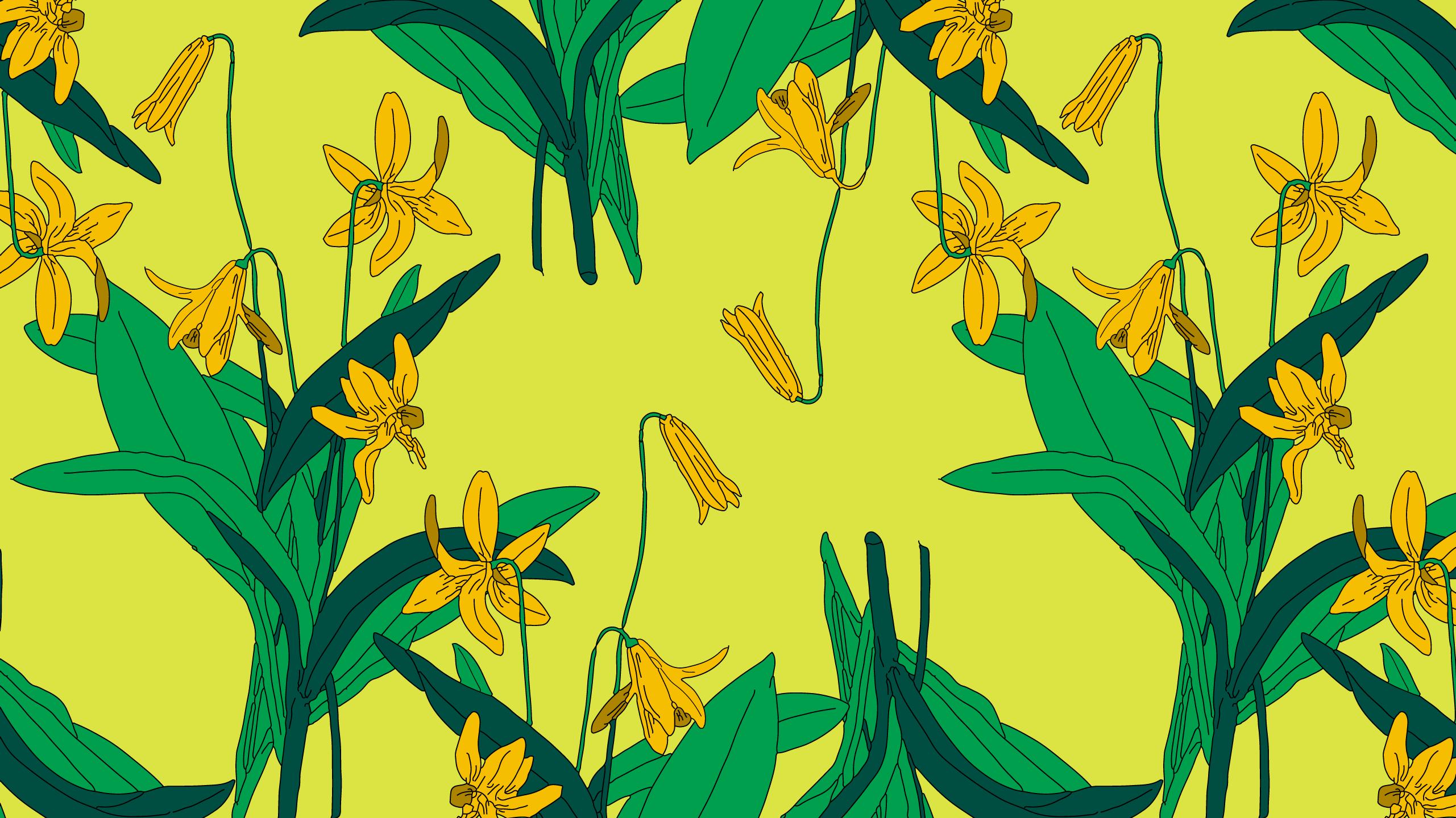 Download Baggu Fall Wallpapers