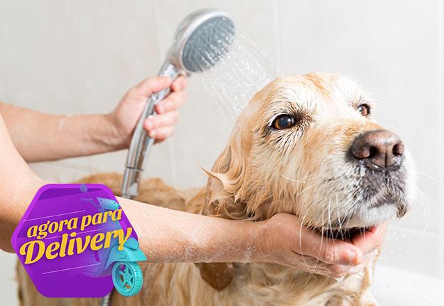 1 Banho + 1 Corte de unha + 1 Limpeza de ouvido para Pets de até 10kg de R$45 por apenas R$35