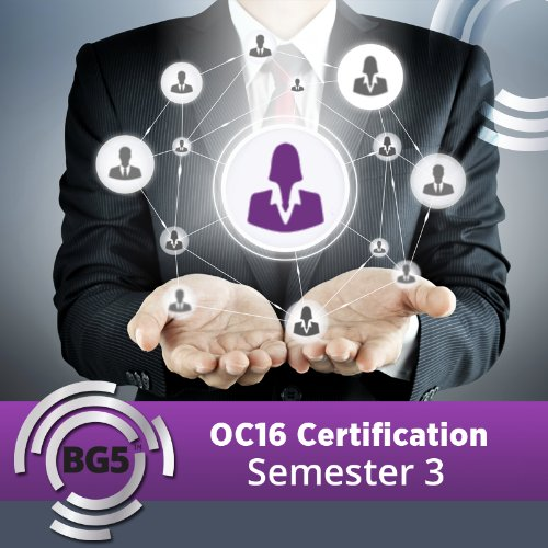 OC16 Large Business Consultant Certification - Semester 3