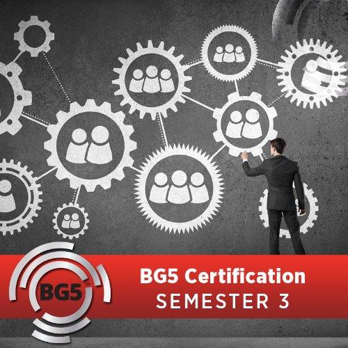 BG5 Business Consultant Certification Program - Semester 3
