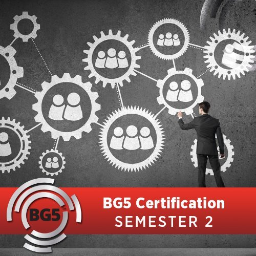 BG5 Business Consultant Certification Program - Semester 2