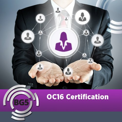 OC16 Large Business Consultant Program ALL 3 Semesters - Course Starting Jan 19, 2021