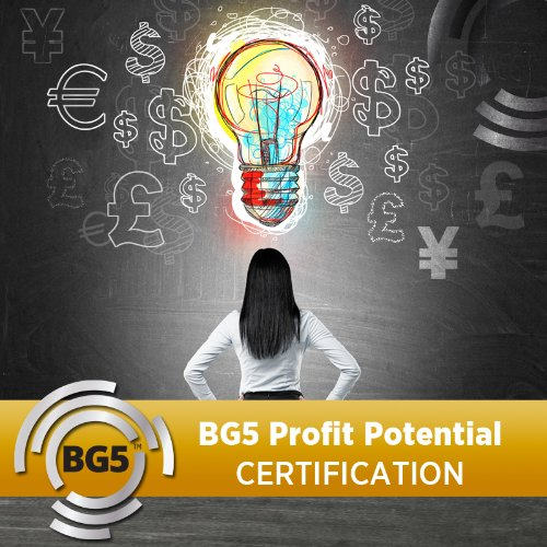 BG5 Profit Potential Coaching Certification - Semester 4