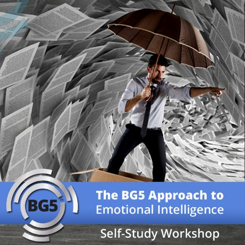 Self Study: The BG5 Approach to Emotional Intelligence