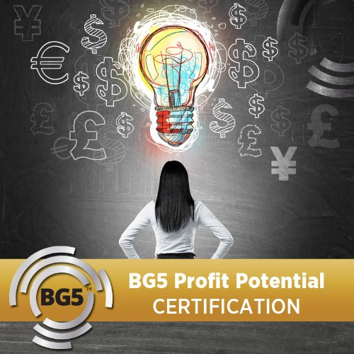 BG5 Profit Potential Coaching Certification - Semester 1