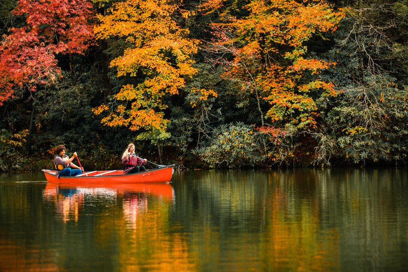 fall-color-in-mcdowell-county.jpg