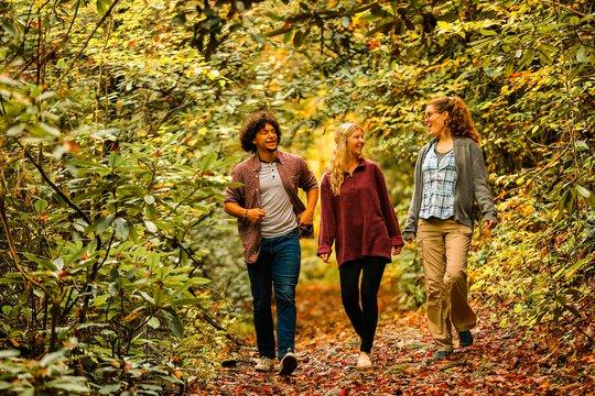 Hiking in McDowell County