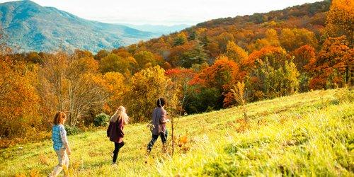 fall-color-hike-in-mcdowell-county.jpg