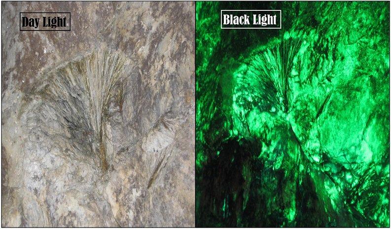 Black Light composite photo.jpg