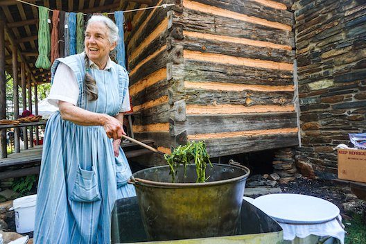 Pioneer Day Dye Lady