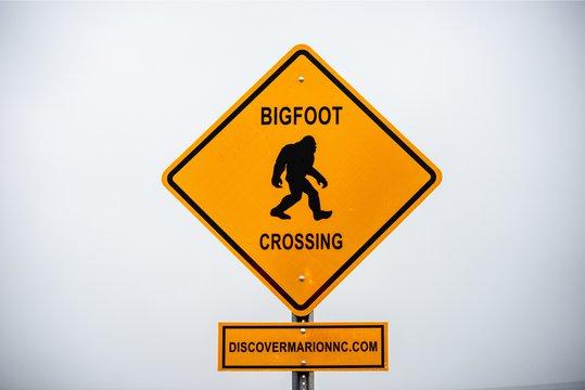 GriffinBigfootCrossingSign1.jpg