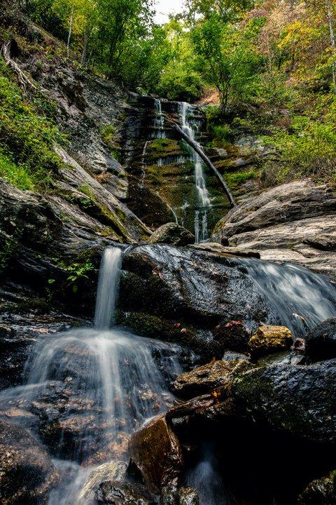 Toms Creek Falls.jpeg
