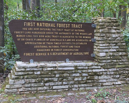 Curtis Creek National Forest Sign
