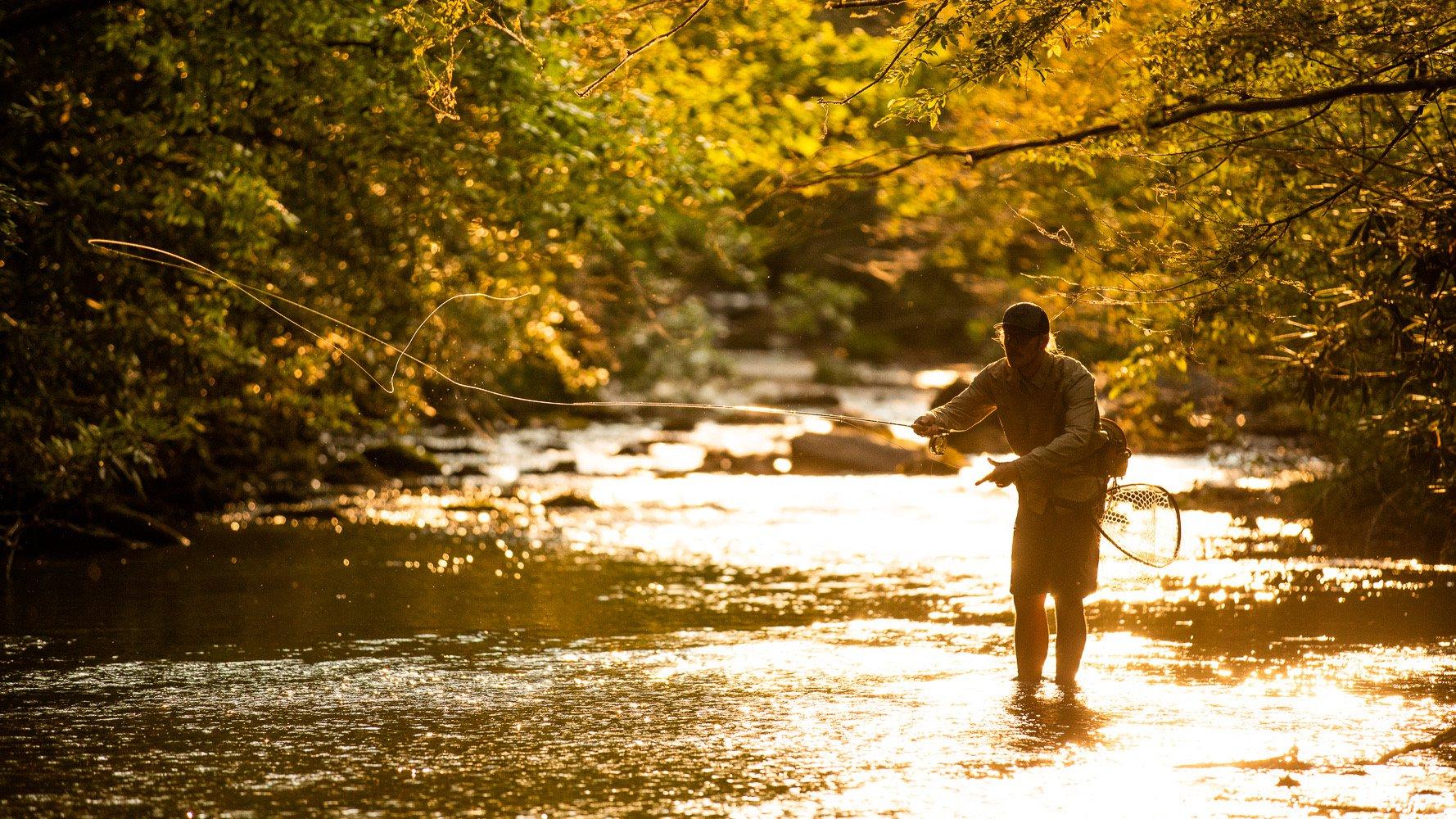 Fly Fishing in Creek