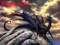 dragon tearz