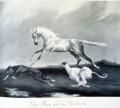 fox leap hanoverians