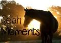 ~selah-moments~