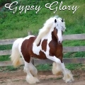 ღღ gypsy glory ღღ