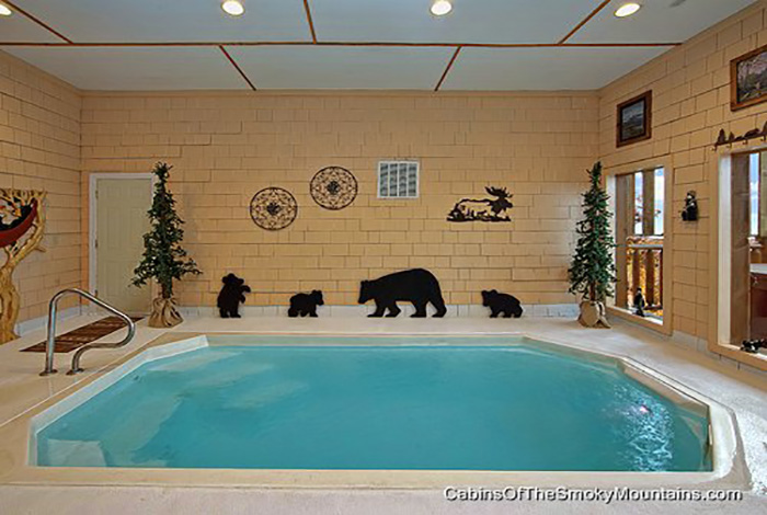Pigeon Forge Cabin - Wet N\' Wild - 1 Bedroom - Sleeps 4 - Jacuzzi ...