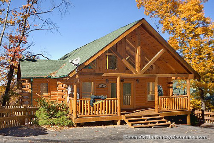Pigeon forge cabin wet n 39 wild from for 1 bedroom pet friendly cabins in gatlinburg tn