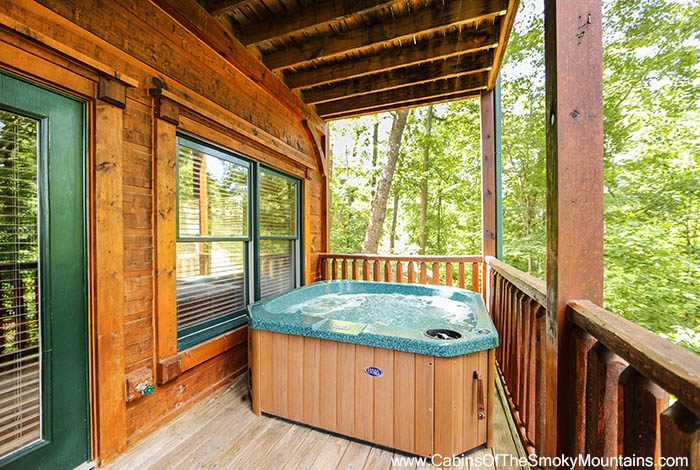 Gatlinburg cabin wilderness lodge 4 bedroom sleeps 12 for Discount smoky mountain cabin rentals