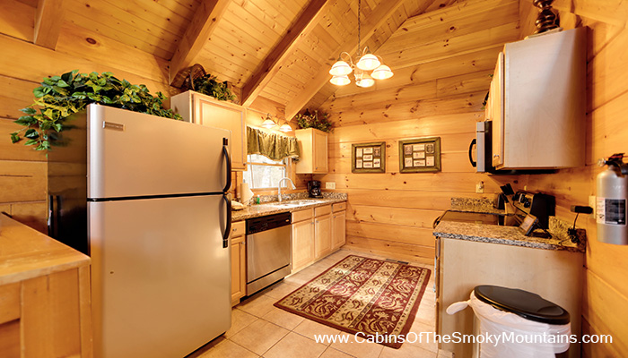 Pigeon Forge Cabin Rustic Splash 1 Bedroom Sleeps 6