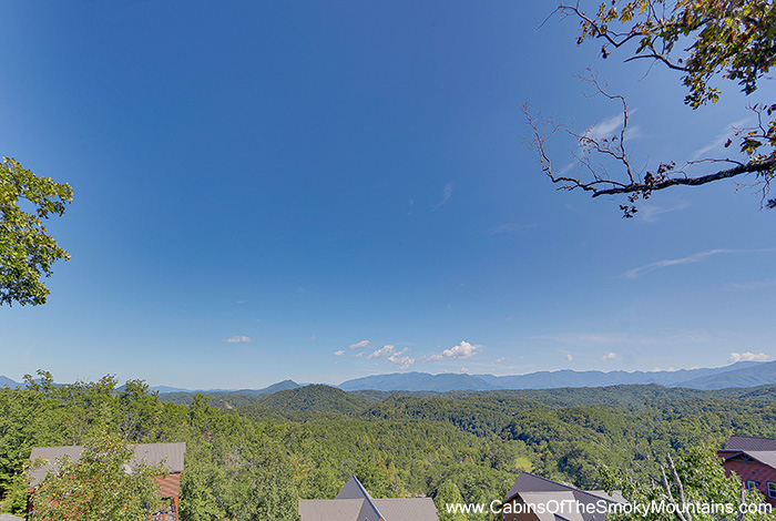 picture of Amazing Views Mansion cabin