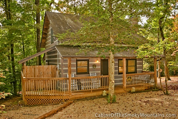 Pigeon Forge Cabin Good Vibrations 1 Bedroom Sleeps 4 Jacuzzi Jukebox Pet Friendly