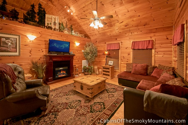 Pigeon Forge Cabin Splish Splash 1 Bedroom Sleeps 4 Jacuzzi Swimming Pool Access