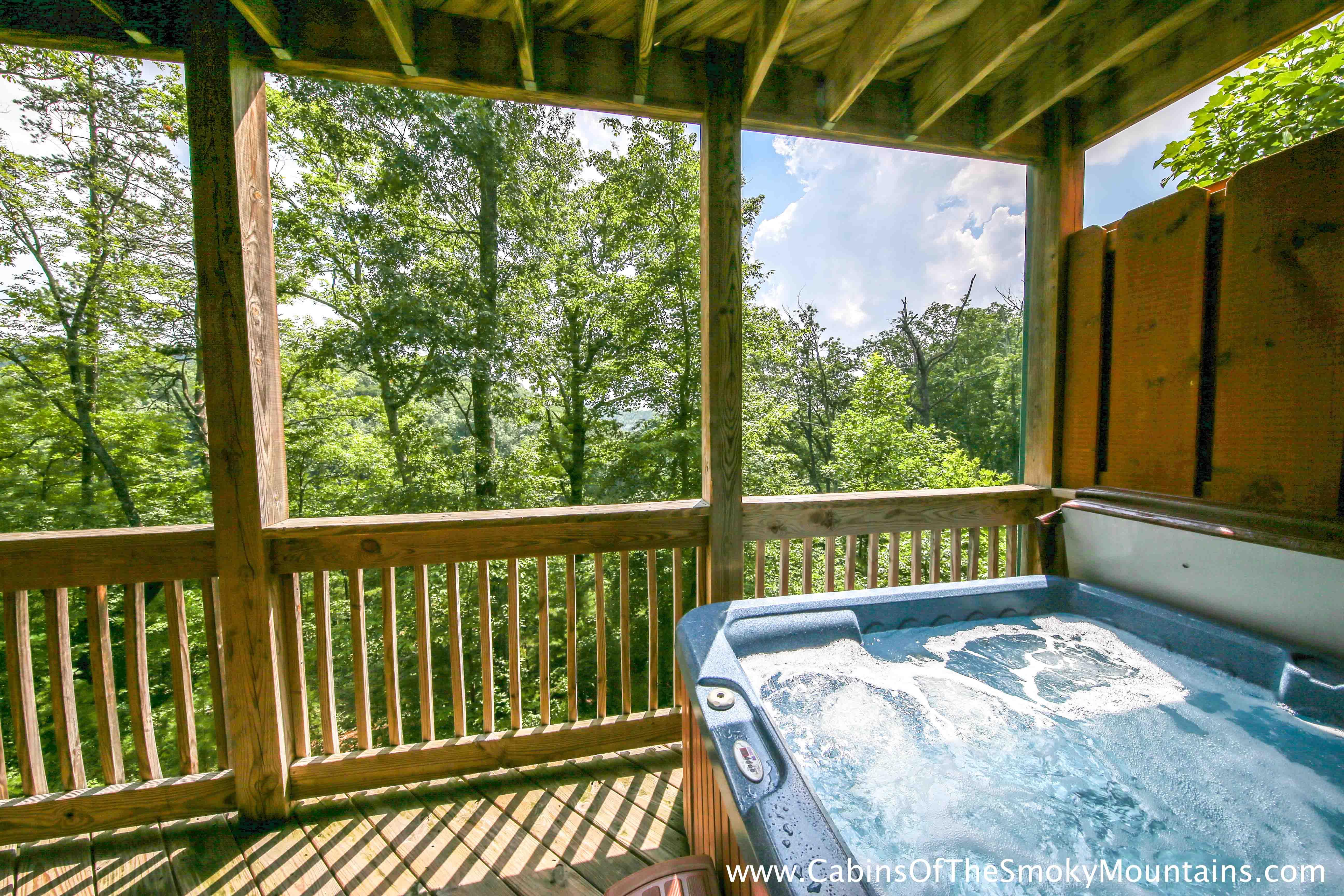 picture of Wildbriar Inn cabin