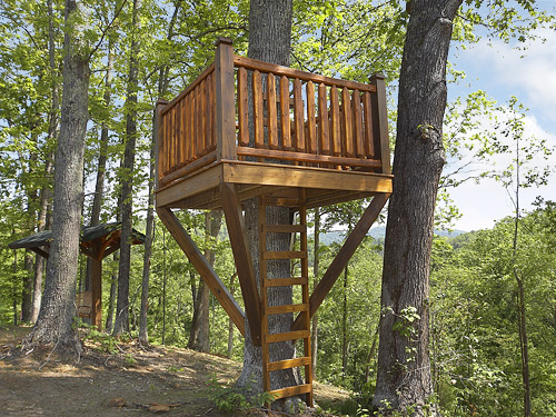 Pigeon forge cabin the treehouse 3 bedroom sleeps 10 for Tree house window ideas