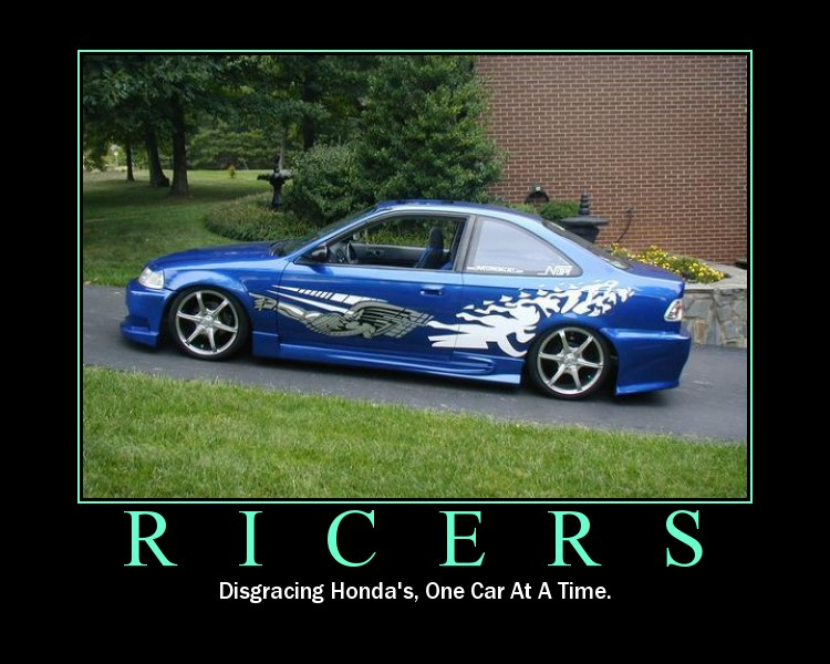 This Is An Insult You Stupid Ricer