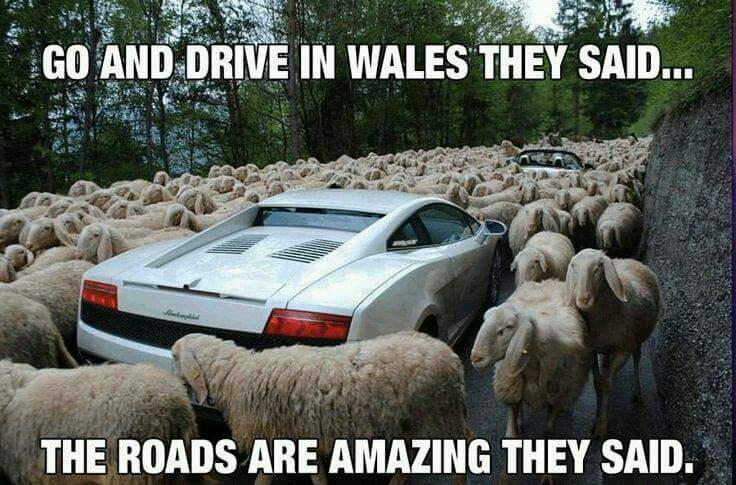 Wales.. how do you explain?