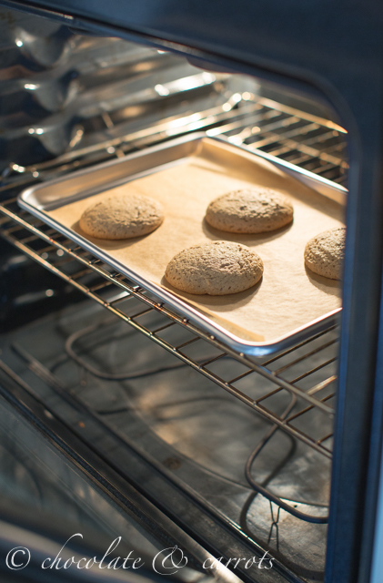 Chocolate Dipped Peanut Butter Cookies-1774