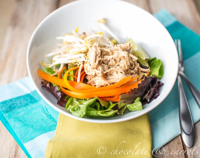 Thai Chicken Salad-2832