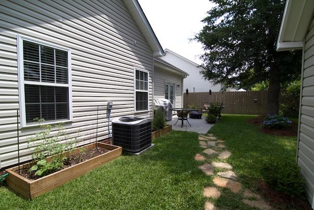 Back Yard-3572