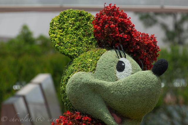 Disney Day 4-8