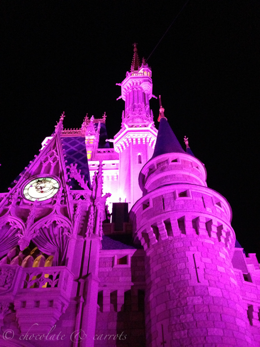 Disney Day 3-39