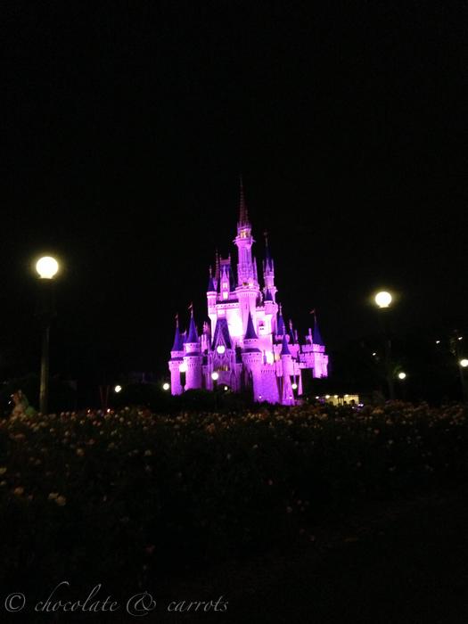 Disney Day 3-41