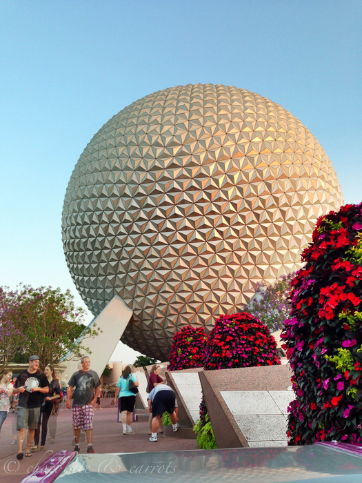 Disney Day 2-16