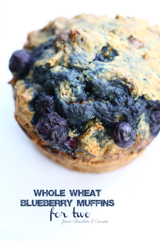 Whole Wheat Blueberry Muffins For Two  chocolateandcarrots.com
