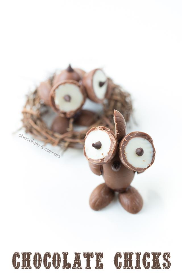 Chocolate Chicks Leaving the Nest | chocolateandcarrots.com